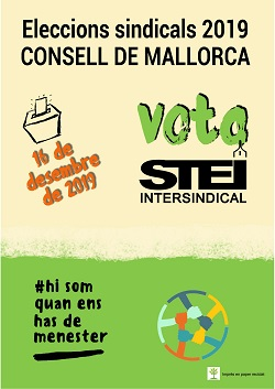 Eleccions Consell Cartell Petit